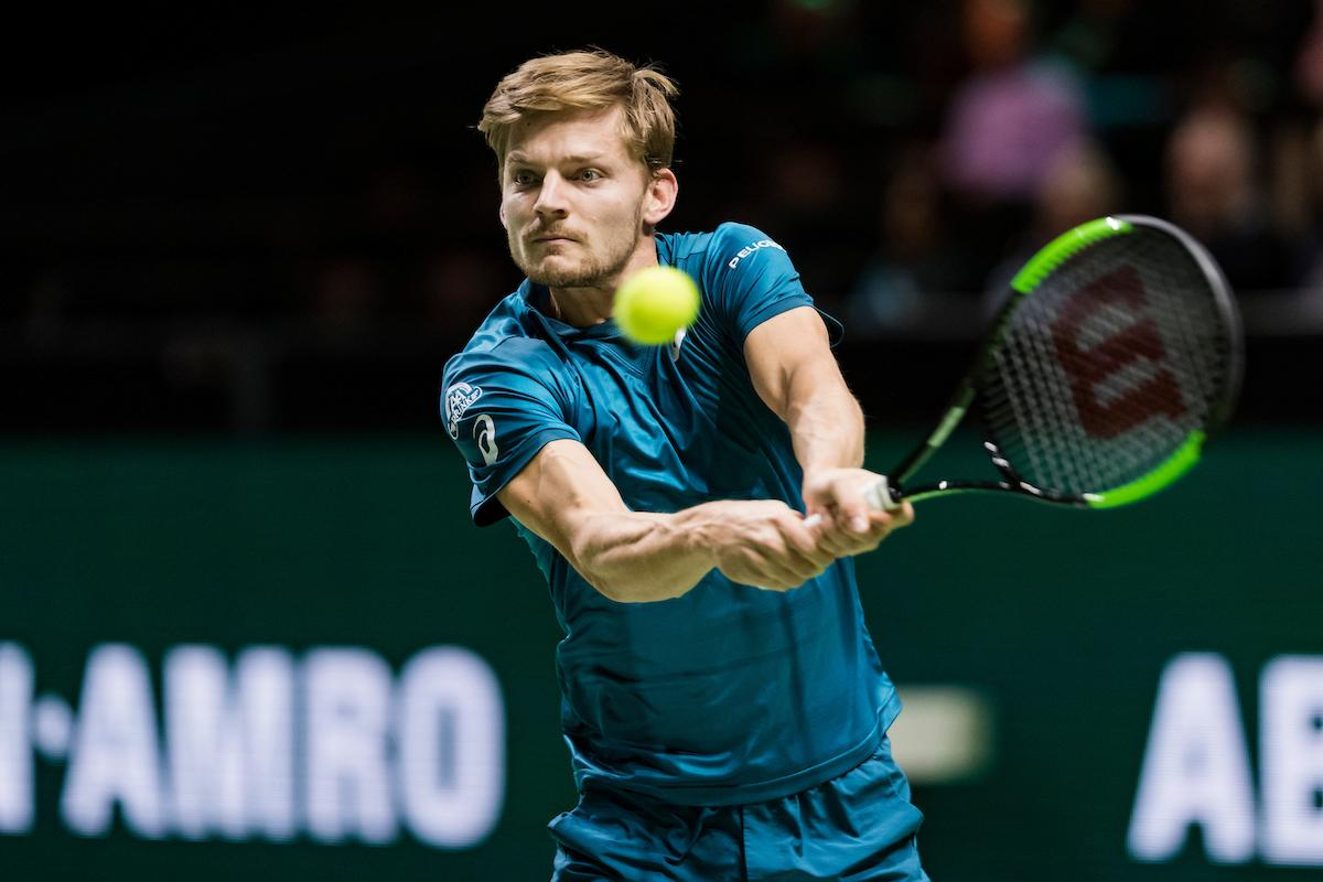 David Goffin op herhaling