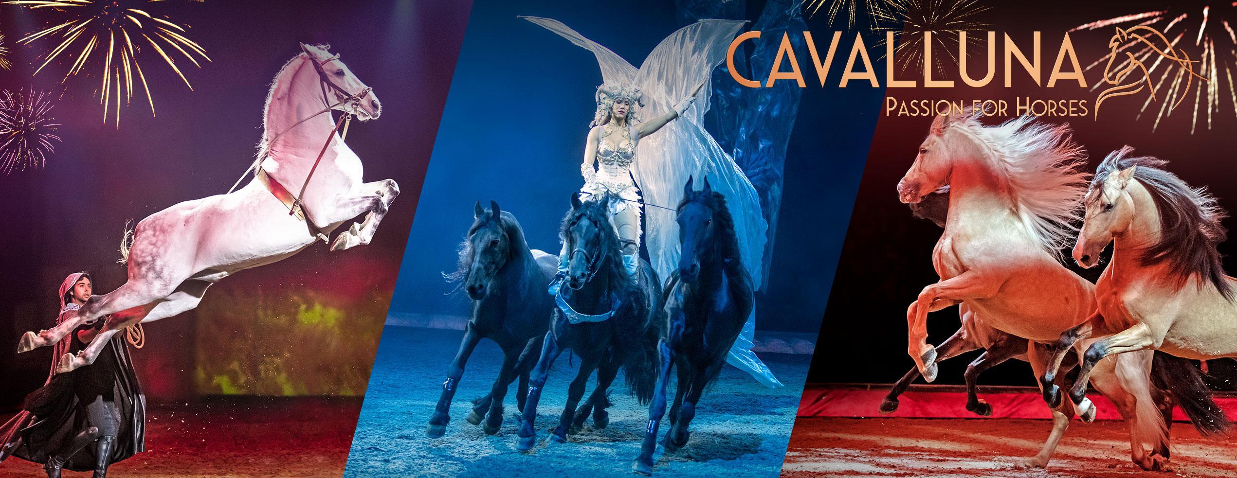 CAVALLUNA - Celebration
