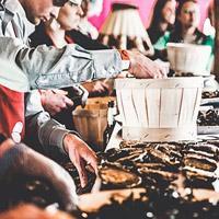 Voorronde NK oestersteken op Gastvrij Rotterdam
