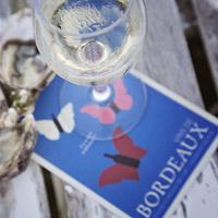 Bezoek de masterclass over Bordeaux wijn & spijs
