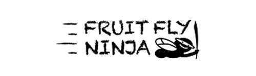 Fruit Fly Ninja